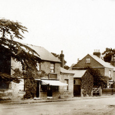 Shop and Cranford House Wellesbourne Road with cedar tree | Barford Heritage Group