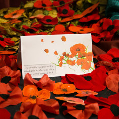 Barford sewing ladies and Barford WI hand-made poppies | Alan McDermott