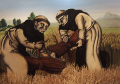 Trinitarian Friars of Thelsford